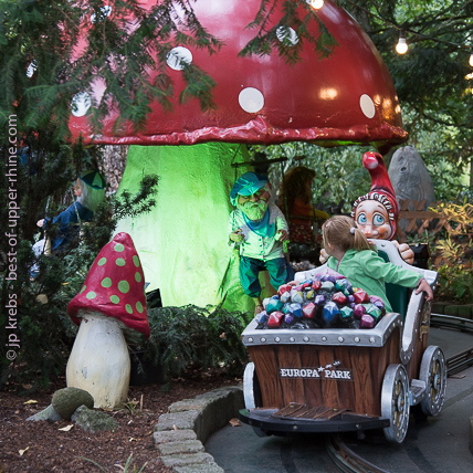 The enchanted forest, a paradise for toddlers ...