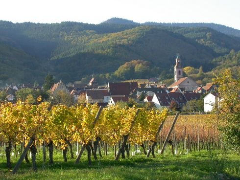 Riquewihr is a jewel on the Alsatian wine route, nested at the bottom of the Vosges mountains and surrounded by some of the most famous vineyards in the world. Riquewihr is especially beautiful in Autumn when the vineyards and the mountain wear their golden dress.